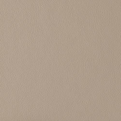 Ambience | Light Taupe | Cuir artificiel | Morbern Europe