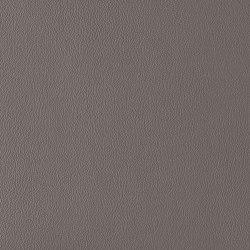 Ambience | Slate | Faux leather | Morbern Europe