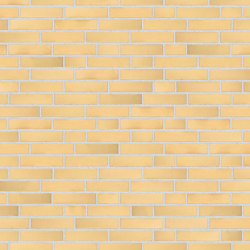 Alpha | RT201 | Ceramic bricks | Randers Tegl