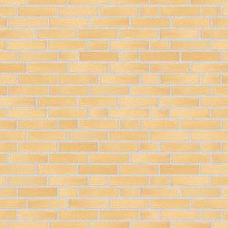 Alpha | RT202 | Ceramic bricks | Randers Tegl