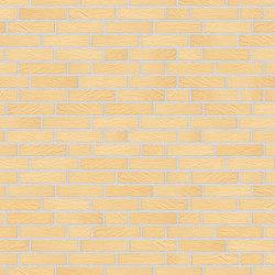 Alpha | RT205 | Ceramic bricks | Randers Tegl