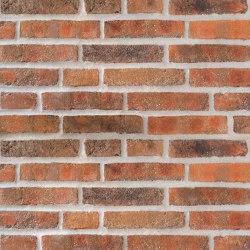 Rustica | RT 445 Red/brown patina | Ceramic bricks | Randers Tegl