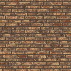 Rustica | RT 452 Red/brown Gotik | Ceramic bricks | Randers Tegl
