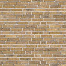 Rustica | RT 454 Giallo | Ceramic bricks | Randers Tegl