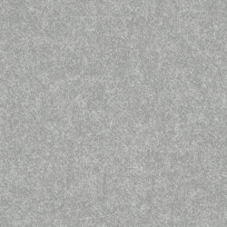 Loden Light Grey | Planchas de madera | Pfleiderer