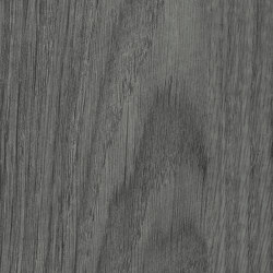 Silver Oak | Wood panels | Pfleiderer