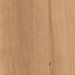 Beech Crenata | Planchas de madera | Pfleiderer