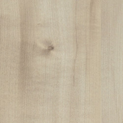 Agostino Maple | Wood panels | Pfleiderer