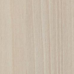 Brushed Alnus | Planchas de madera | Pfleiderer