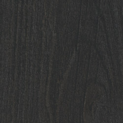 Sugi ban | Planchas de madera | Pfleiderer
