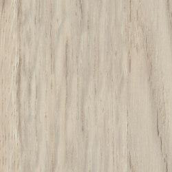 Patula Cream | Planchas de madera | Pfleiderer