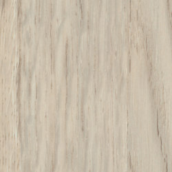 Patula cream | Wood panels | Pfleiderer