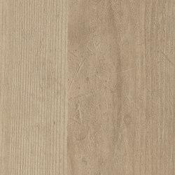 Sand Pine | Planchas de madera | Pfleiderer