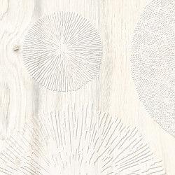 Daring Ivory | Infinity | Ceramic tiles | Rondine