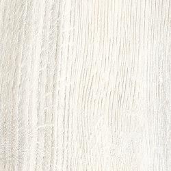 Daring Ivory | Strong | Baldosas de cerámica | Rondine