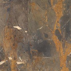 Level Marmi Fossil Brown | Piastrelle ceramica | EMILGROUP