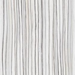 Level Marmi Zebrino | Baldosas de cerámica | EMILGROUP