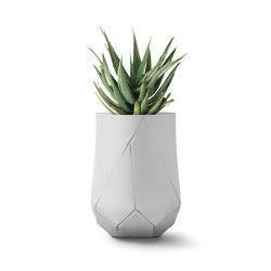 Bhaca Large | Vasi piante | Indigenus