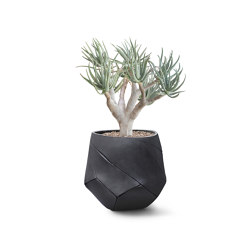Bhaca Small | Plant pots | Indigenus
