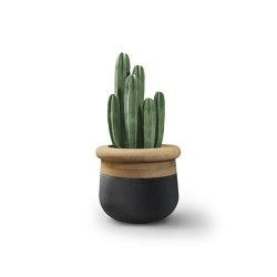 Soma XS Mixed Materials | Plant pots | Indigenus