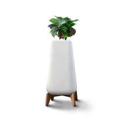 Terra Tall   Plant pots   Indigenus