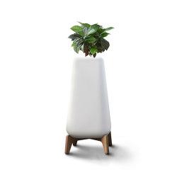 Terra Tall | Plant pots | Indigenus