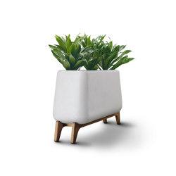 Terra Trough | Plant pots | Indigenus