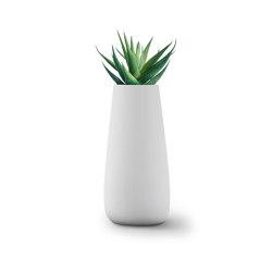 Tuber Large Stone   Plant pots   Indigenus