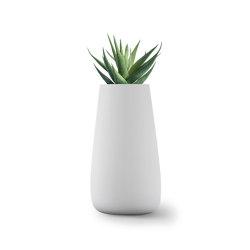 Tuber Large Stone | Plant pots | Indigenus