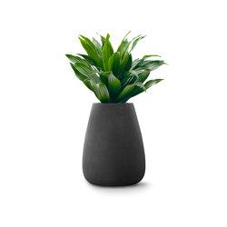 Tuber Medium Stone   Plant pots   Indigenus