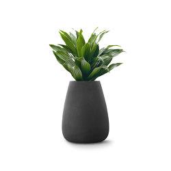 Tuber Medium Stone | Plant pots | Indigenus