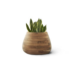 Tuber Small Wood | Plant pots | Indigenus