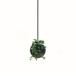 Globe | Drope | Plant pots | Bloss