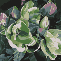 Opera | Leonore | Formatteppiche | Bloss