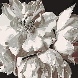 Opera | Tosca | Rugs | Bloss