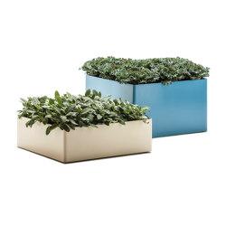 Radius   Plant pots   Bloss