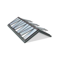 Ridgelight 25-40° | Window types | Velux Commercial
