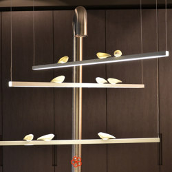 Smoon Birds Looking At | Suspended lights | BEAU&BIEN