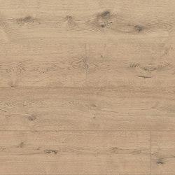 Cured Wood Hard wax Oil | Stenestad, Oak | Wood flooring | Bjelin