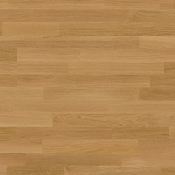 Parquet Natural Oil | Dobri, Oak | Wood flooring | Bjelin