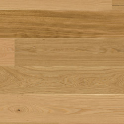 Parquet Natural Oil   Ravnik, Oak   Wood flooring   Bjelin