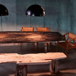 mary's design mood | Petrified Wood Dining Table with bench | Tavoli pranzo | MARY&