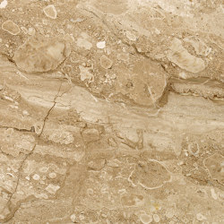 Beige Marble - Brown | Breccia Sarda | Natural stone panels | Mondo Marmo Design
