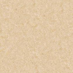 Marmo Marrone - Beige | Trani | Lastre pietra naturale | Mondo Marmo Design