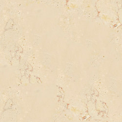 Beige Marble - Brown | Trani Filetto Rosso | Natural stone panels | Mondo Marmo Design