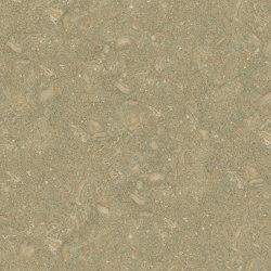 Green Marble | Fossil Green | Natural stone panels | Mondo Marmo Design