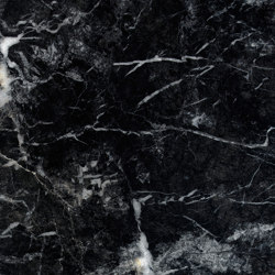 Grau Marmor | Grigio Carnico | Naturstein Platten | Mondo Marmo Design