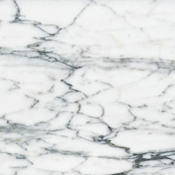 White Marble | Arabescato Carrara | Natural stone panels | Mondo Marmo Design