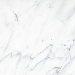 White Marble | Bianco Statuario | Natural stone panels | Mondo Marmo Design