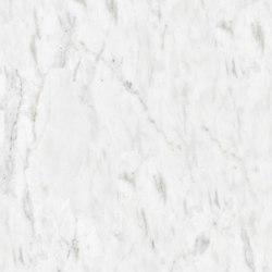 Marbre Blanc | Michelangelo | Panneaux en pierre naturelle | Mondo Marmo Design